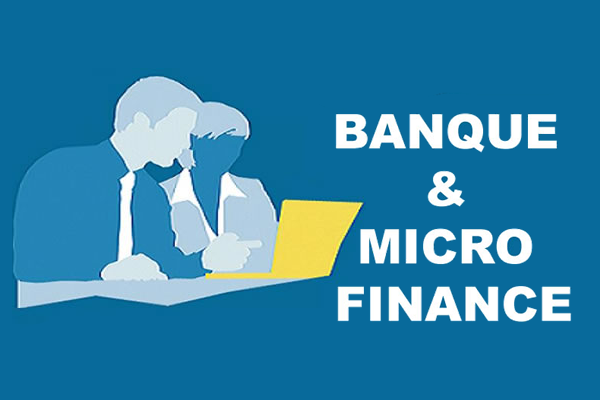 Banque et micro_finance